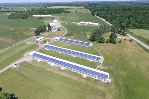Aerial view of solar panels on barn roofs
