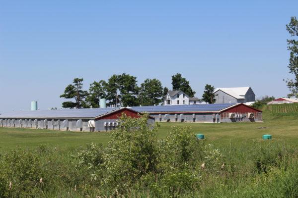 Rooftop solar on barns