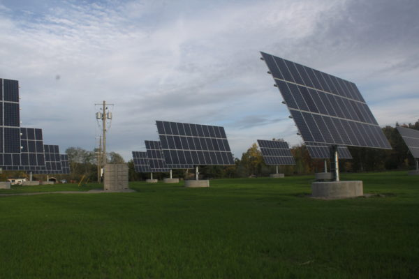 Field of solar trackers