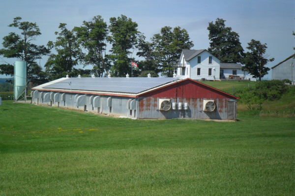 Barns with roof mounted solar panels